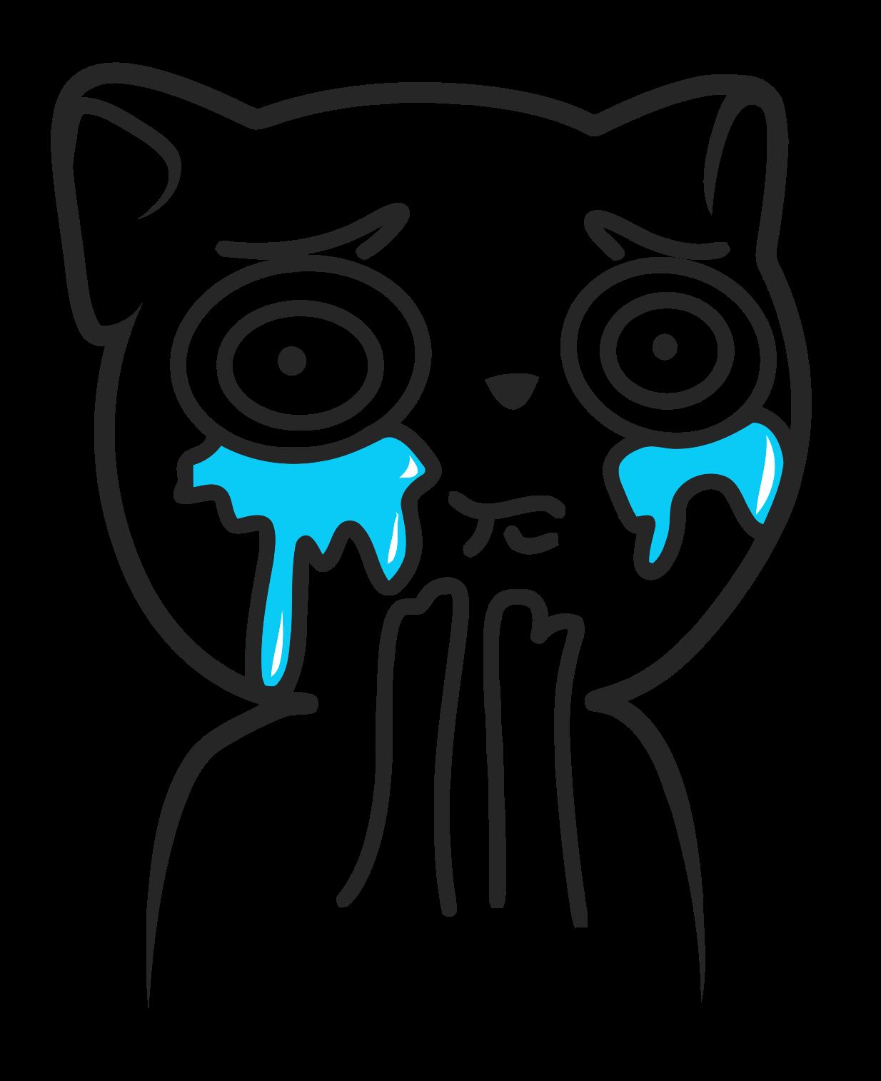 73c6faeac32700f4699f76a99f152e89 cat overload internet faces pinterest meme faces, rage faces