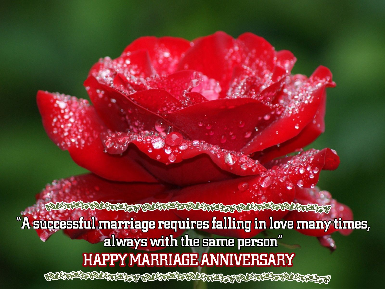 Happy Merrage Anniversary With Beautiful Quotes Image