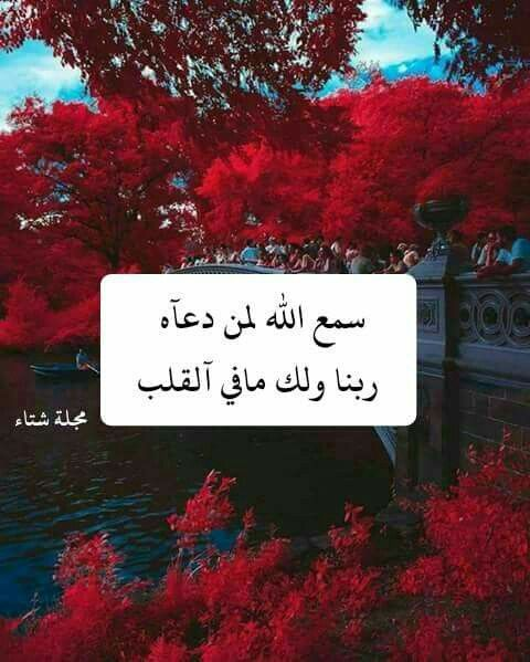 Cool Words Islam Allah