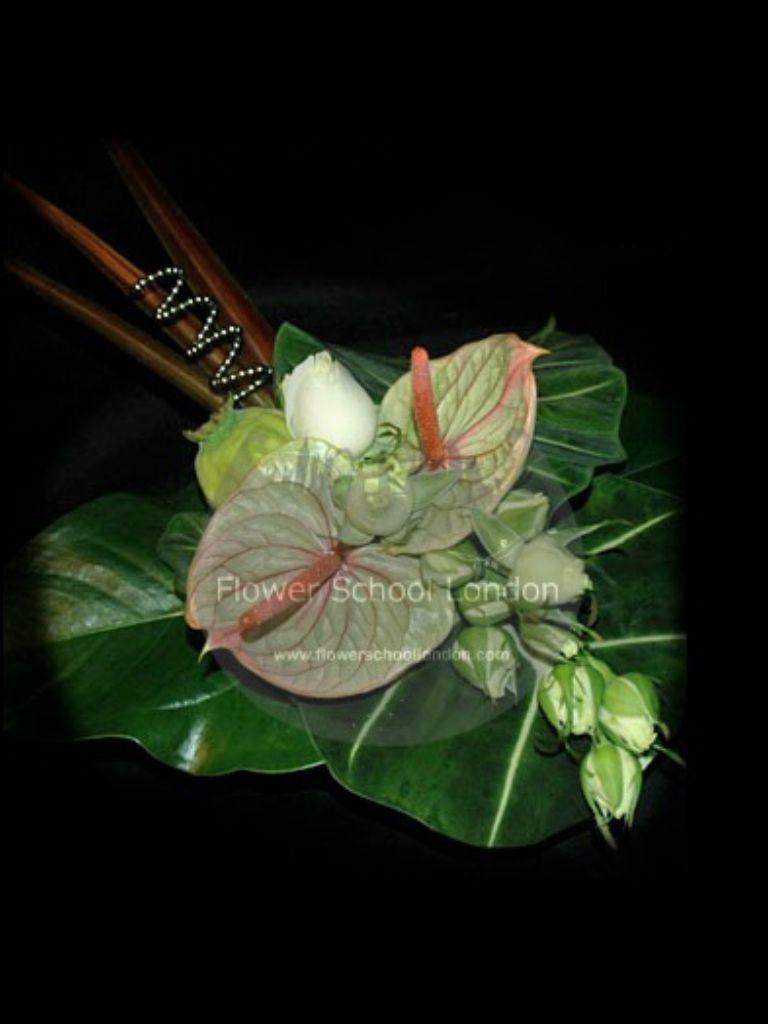 Anthurium And Foliage Coaxed Into A Stingray Design Plant Leaves Foliage Anthurium