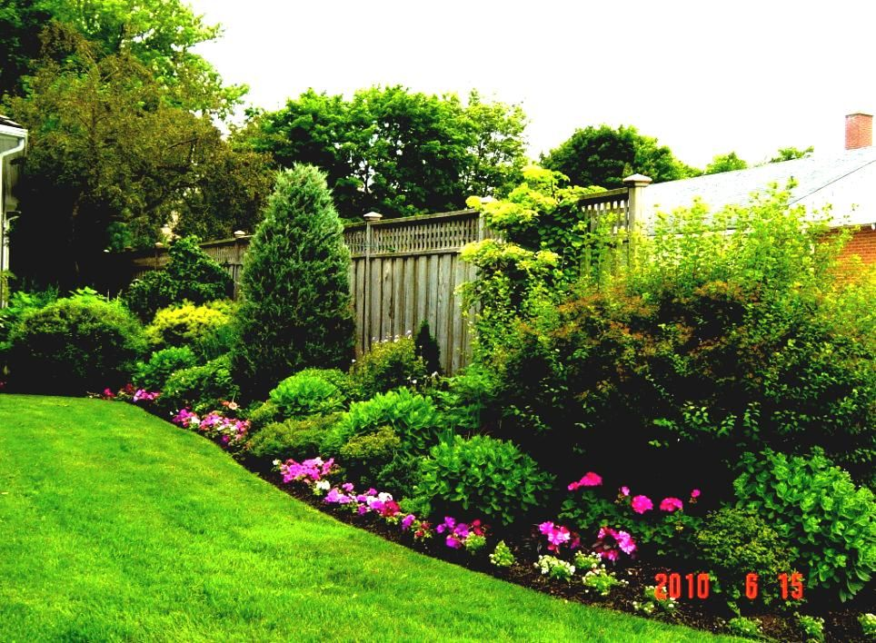 planting by fences   Gallery of Easy Backyard Landscaping ... on Square Backyard Design Ideas id=26374