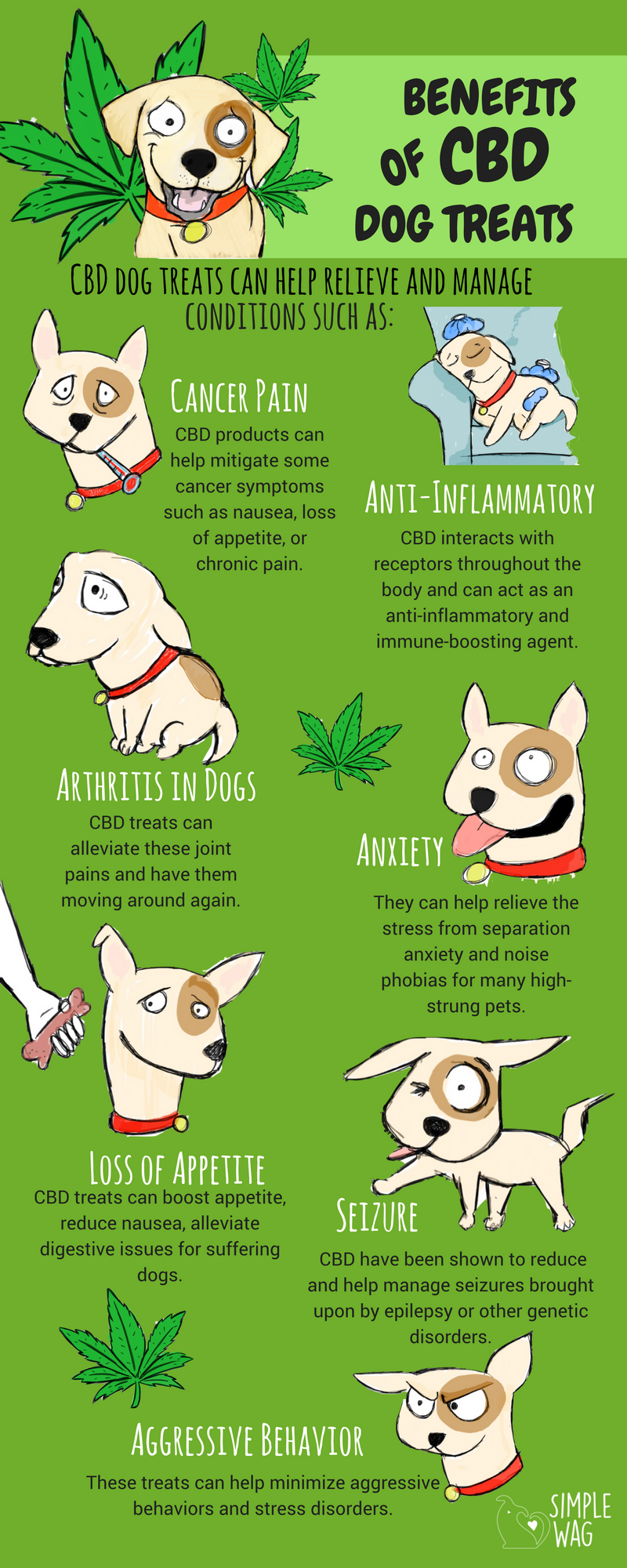 Why Cbd Dog Treats Are The Best For Your Dog Infographic Oils For Dogs Dog Treats Cbd Hemp Oil