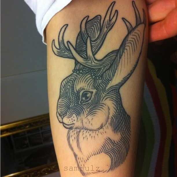 'Jackalope' Tattoo by Sam Rulz. New Zealand born tattooist, artist  typographer now living and working in Vienna. I have been following her work for years and particularly love her etching-esque tattoo style. She uses line wonderfully to create form and tone. Along side her tattooing, Sam Rulz is also a brilliant painter and calligrapher.