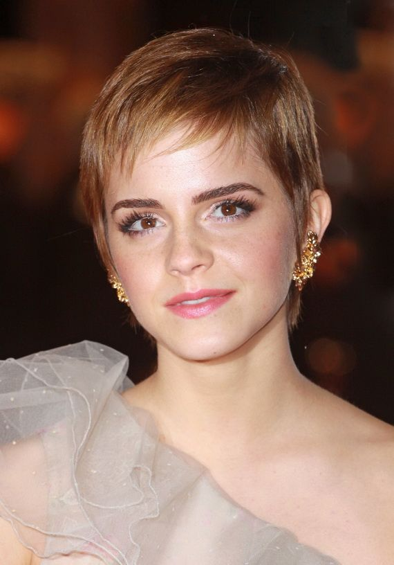 Brilliant 1000 Images About Short Haircuts On Pinterest Michelle Williams Short Hairstyles Gunalazisus