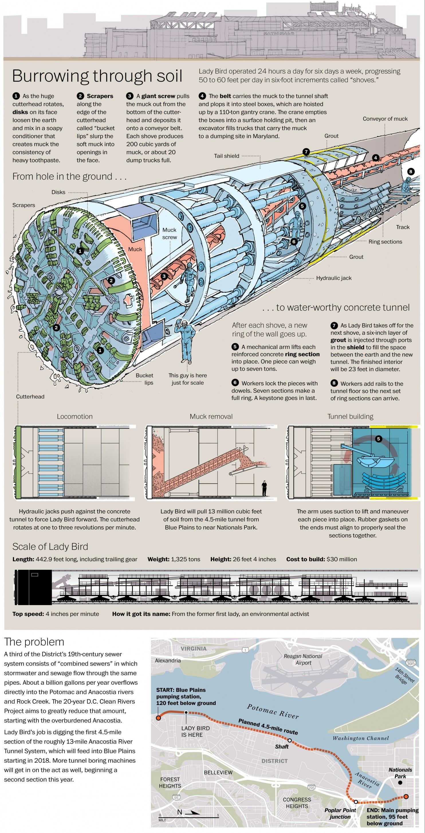 Lady Bird Tunnel Boring Machine Schematic  Bertha Ref