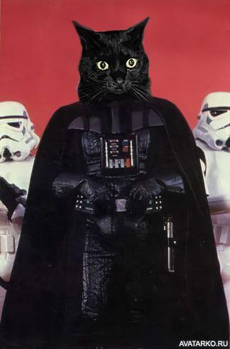 Внешность Дарта Вейдера без маски — Фото аватарки | Дарт ...
