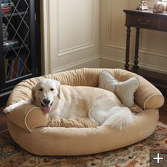 Comfy Couch Pet Bed Dog Kennel Ideas Pinterest Pet Beds Dog Beds And Dog