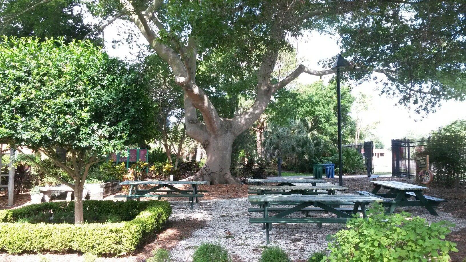 73c9f0dcab3635bf063e20b3717001ed - The Florida Botanical Gardens In Largo