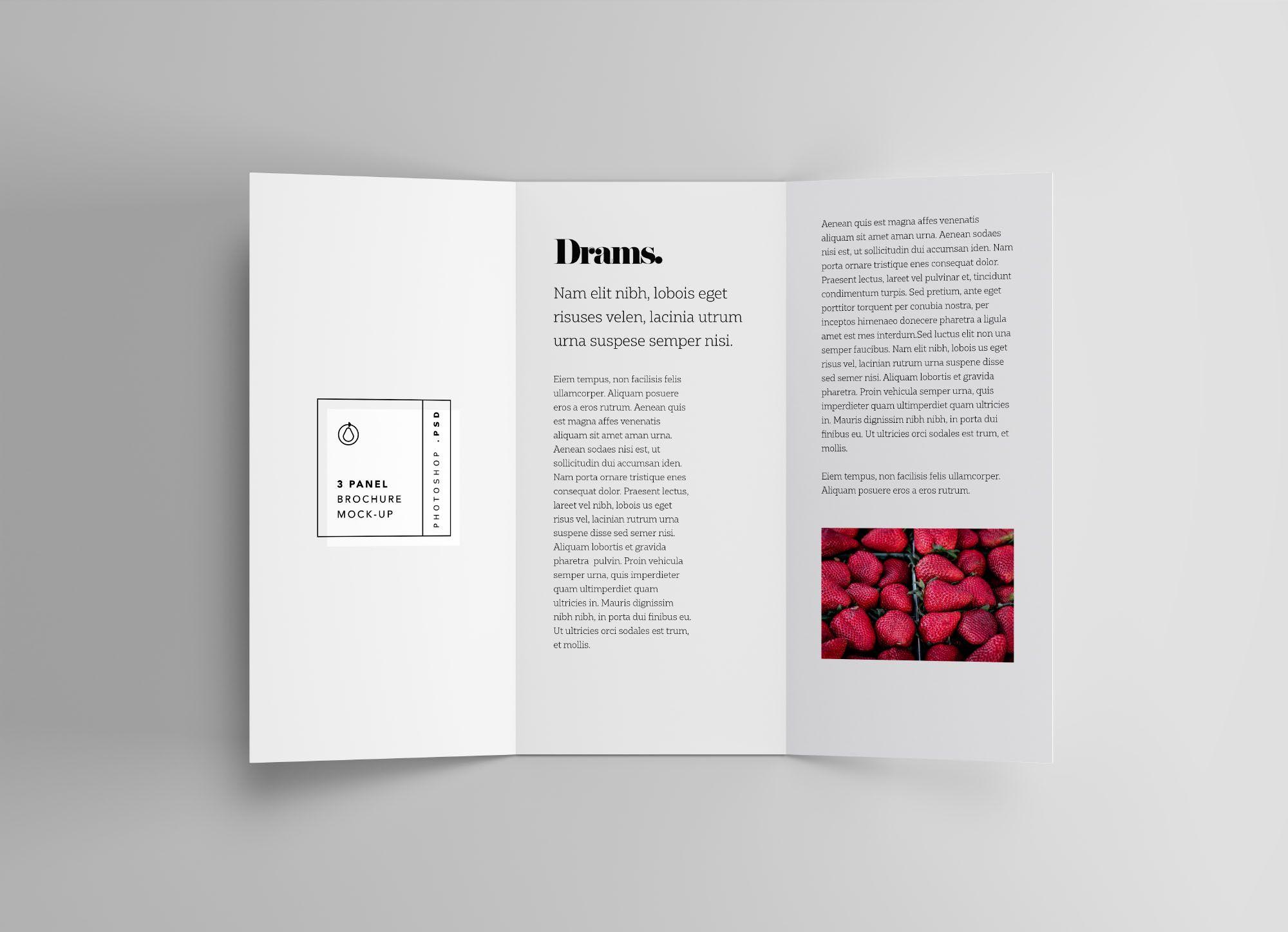 3 Panel Brochure Mockup Brochure Brochures Mockups Brochure Design