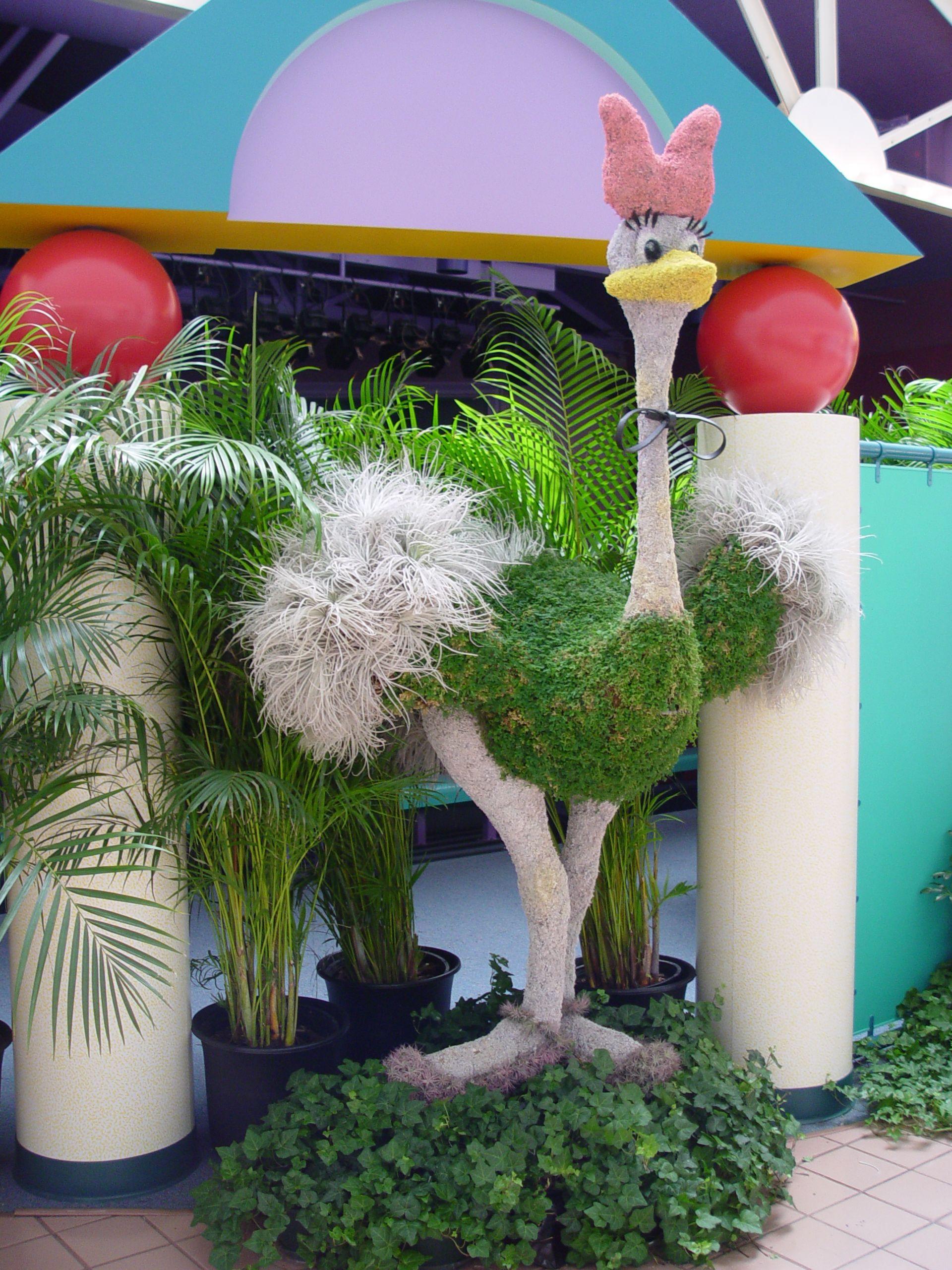 Ostrich topiary | Epcot, Disneyworld, FL