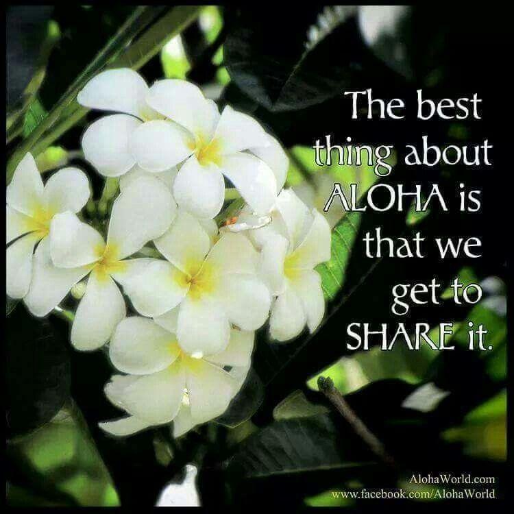 Plumeria Aloha Friday Aloha Hawaiian Quotes