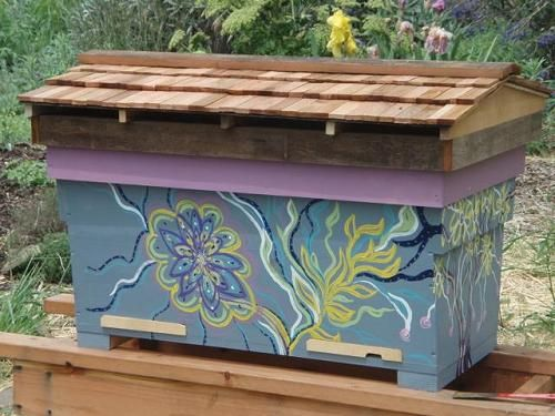 Horizontal Top Bar Hive