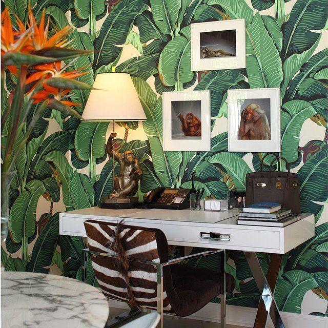 10 Banana Leaf Wallpaper Instagrams To Celebrate Spring