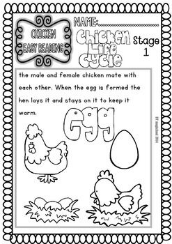 Chicken ( Ready to Print Easy Readings and Worksheets