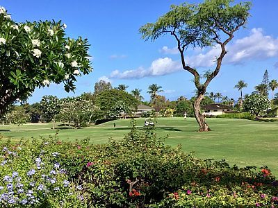 VRBO.com #502643 - Charming Condo with Golf/Ocean View - Recently Remodeled