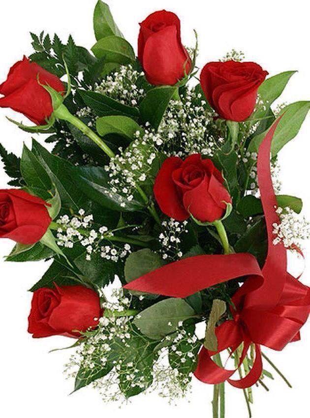Pin by Vjera Nanjara on Ruže Roses | Pinterest | Flowers