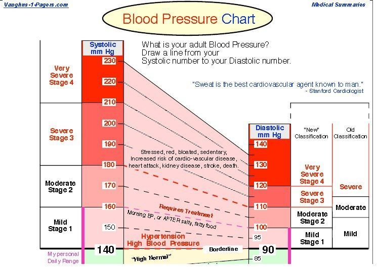 Blood Pressure Chart A Pdf File If You Have Blood Pressure And