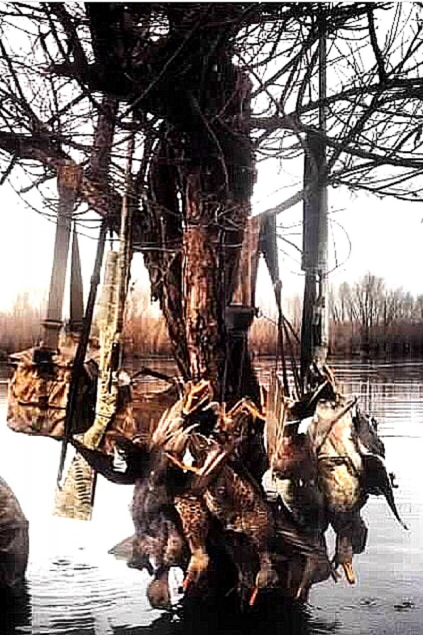 Pit Blinds for Duck Hunting in 2020 Duck hunting