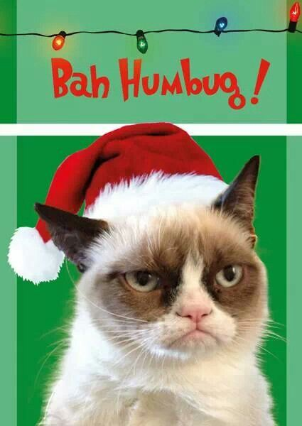 Merry xmast! I hope u get run over by a reindeer. - grumpy cat haha