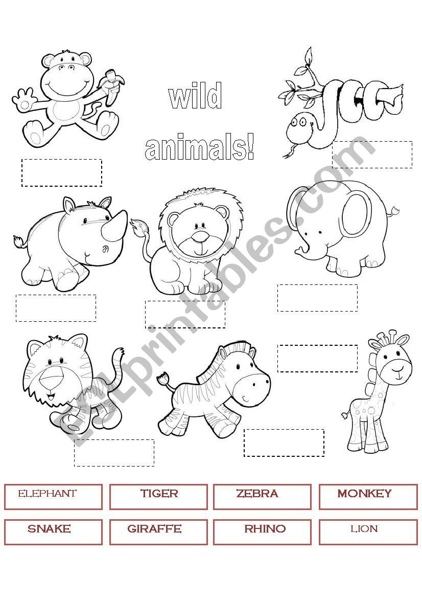 wild animals 1 worksheet teaching animales en ingles animales de zool gico y animales salvajes. Black Bedroom Furniture Sets. Home Design Ideas