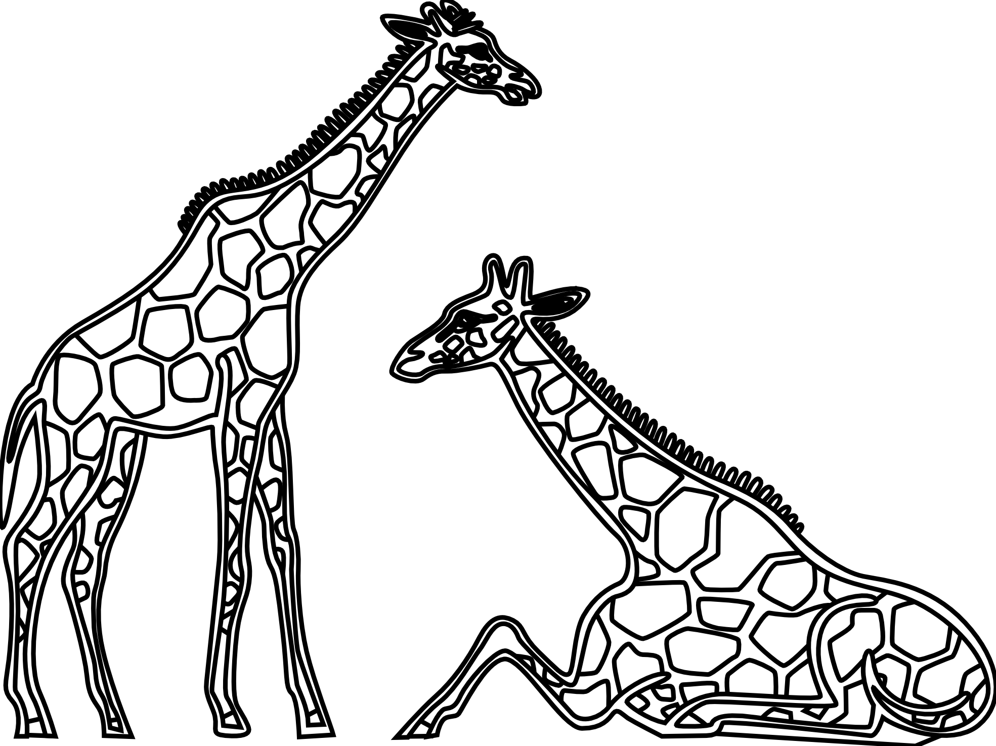 line drawing giraffe Google Search Clean Lines