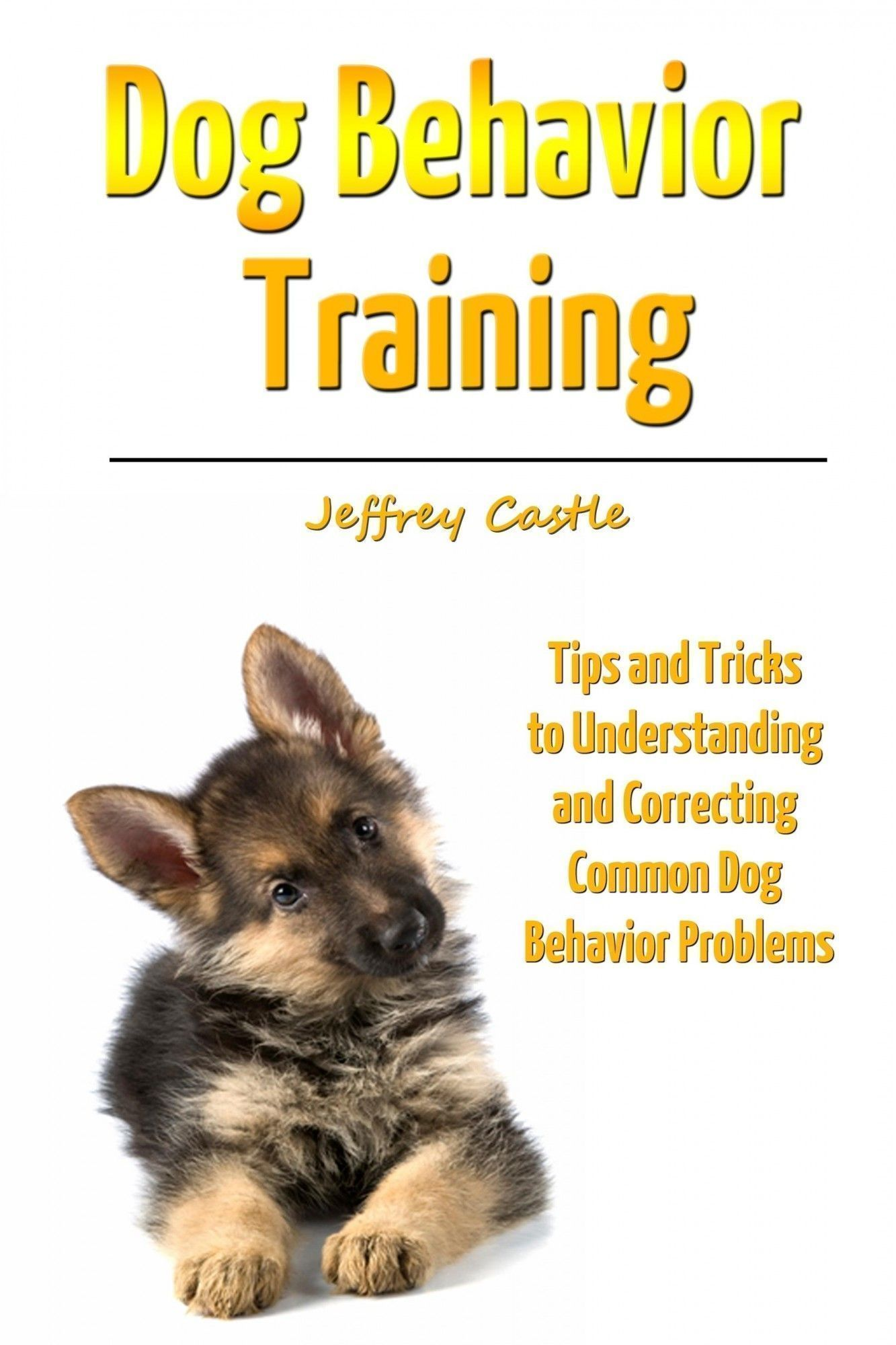 Dog behavior problems training tips check this useful