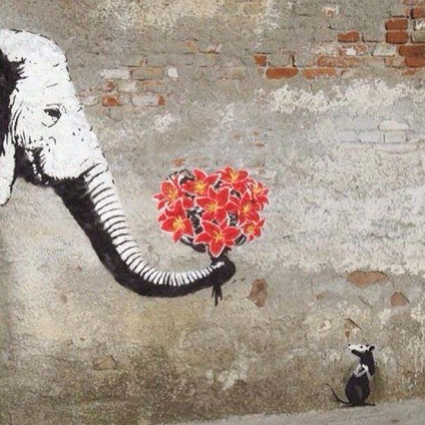 "We are Rational | It is our Nature to | Take action in the Present | Based on our Experience | Driven by Fear and Greed |Which cloud the Mind | We rely on our Knowledge | Of the Past | Not our Reason | In the Present... [ ""Love Hurts"" by Outis ] #poetry  #poetrycommunity  #philosophy  #streetart  #urbanart  #elephant http://quotags.net/ipost/1644911419731075045/?code=BbT5jicDd_l"
