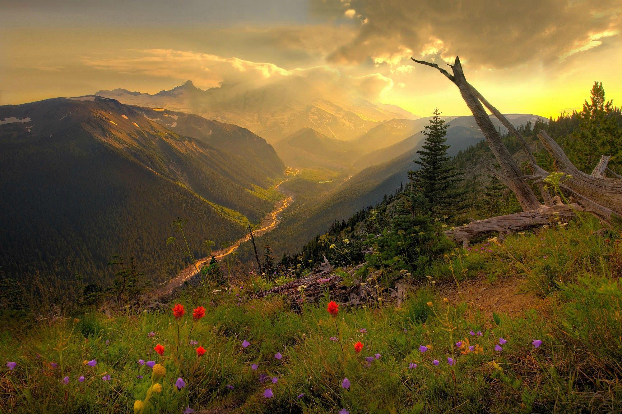 beautiful Mount Rainier