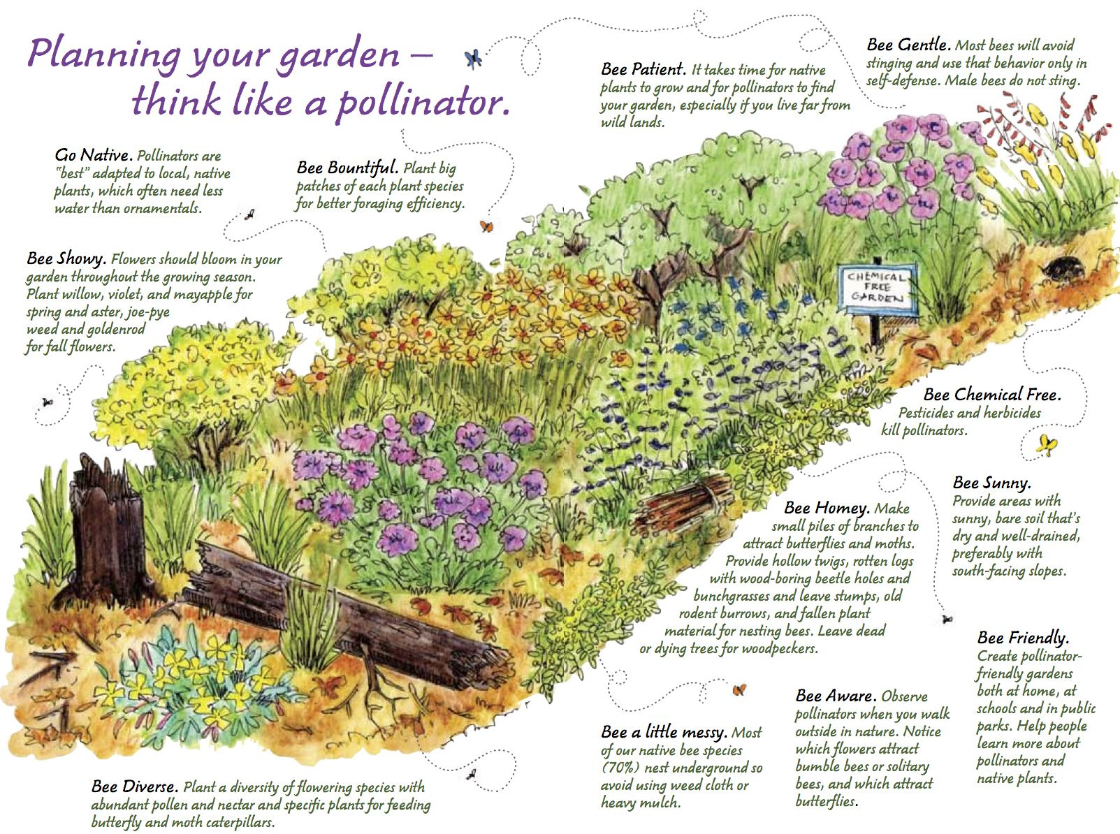 Plan Your Garden How To Celebrate National Pollinator Week 640 x 480