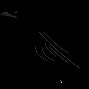 black bird silhouette clip art free vector cover me pinterest rh pinterest com blackbird clipart red winged blackbird clipart
