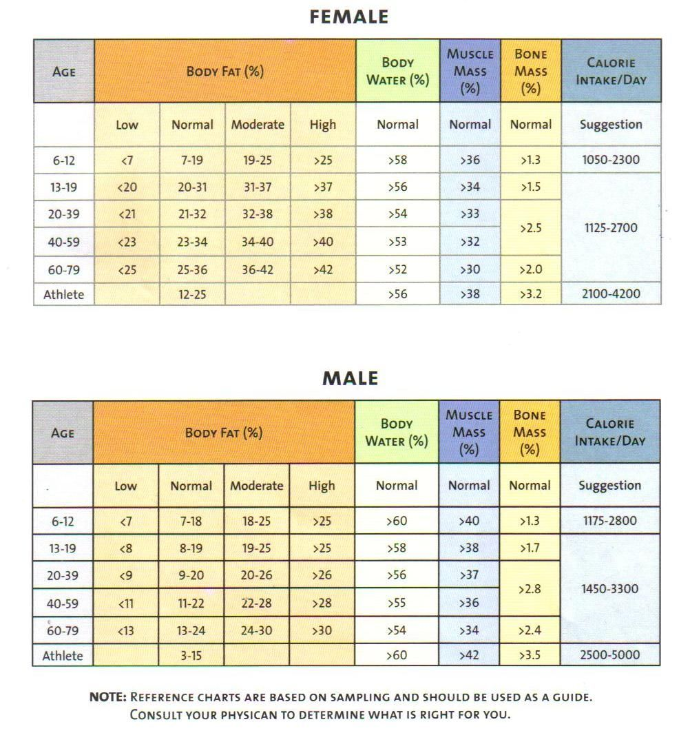 Everything about muscle mass percentage with charts muscle mass everything about muscle mass percentage with charts muscle mass muscles and running nvjuhfo Gallery