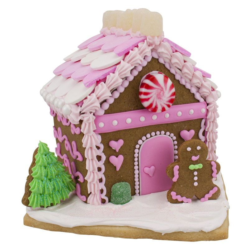 Gingerbread House Kit By Ann Clark Cookie Cutters Fun Pink For Christmas