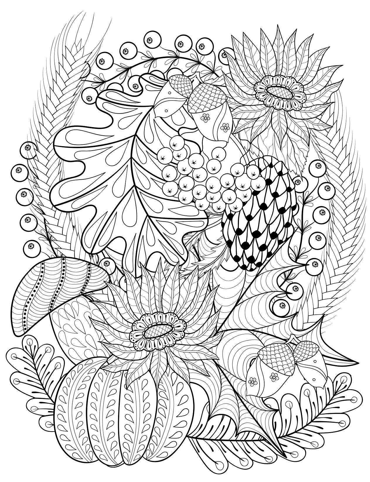 Abstractootoñolibrocoloringpage flores y frutas