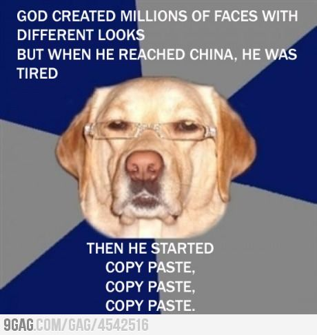 Image result for animal racist funny