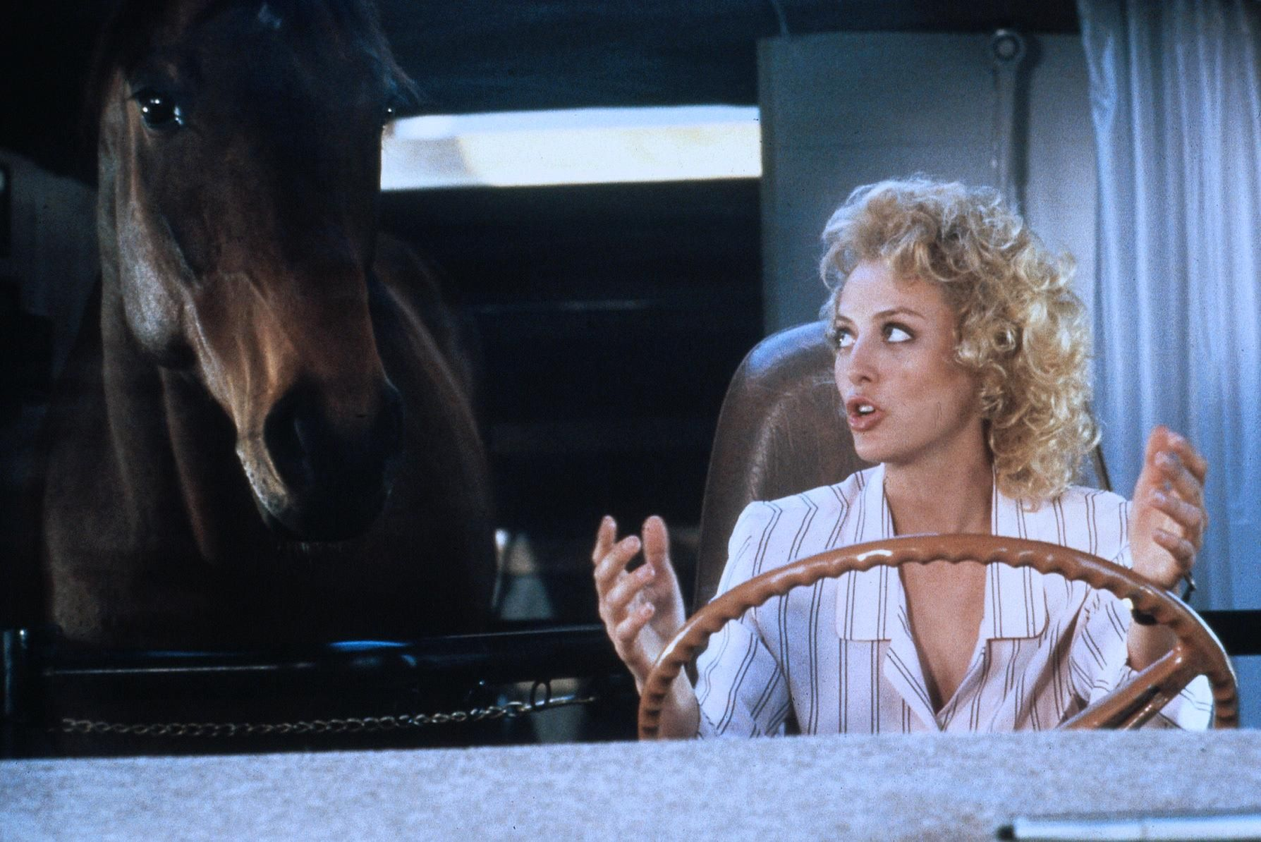 Image result for virginia madsen hot to trot