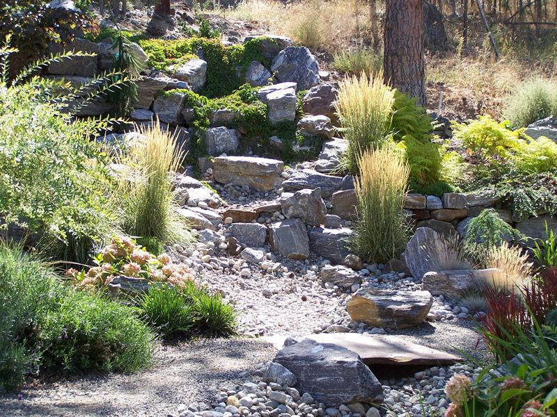 Dry creek bed landscaping designs synergy landscape for Koi fish pond kelowna