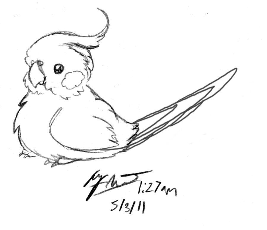 Cockatiel Drawings Google Search Passaro Desenho Desenhos A