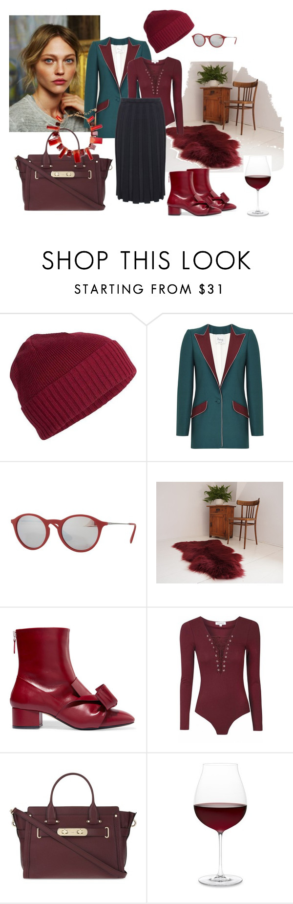 """Autumn style #2"" by lailamur on Polyvore featuring мода, Icebreaker, Hebe Studio, Ray-Ban, N°21, Coach, Riedel и Oscar de la Renta"