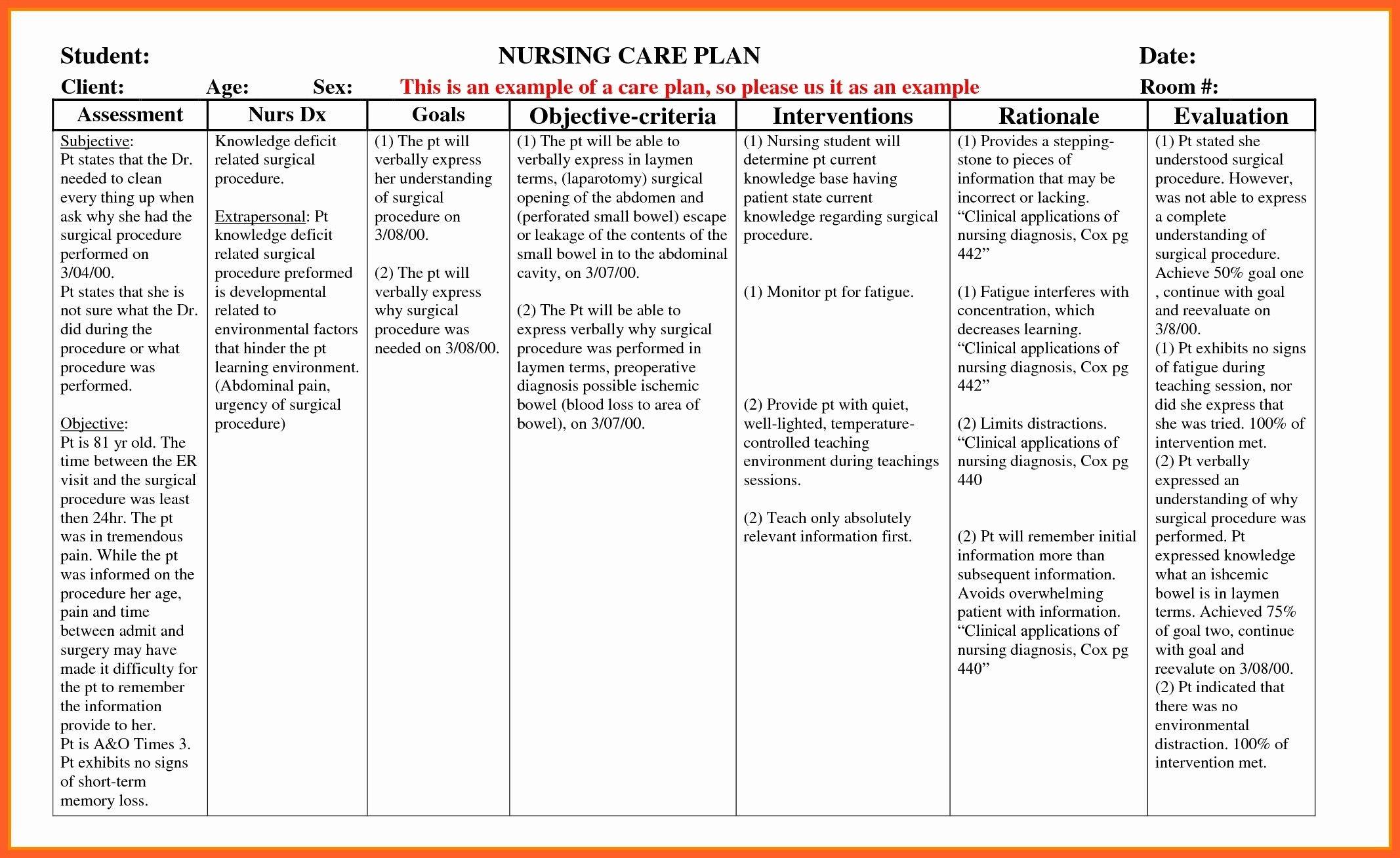 Example Care Plan Template For Elderly Nursing Home