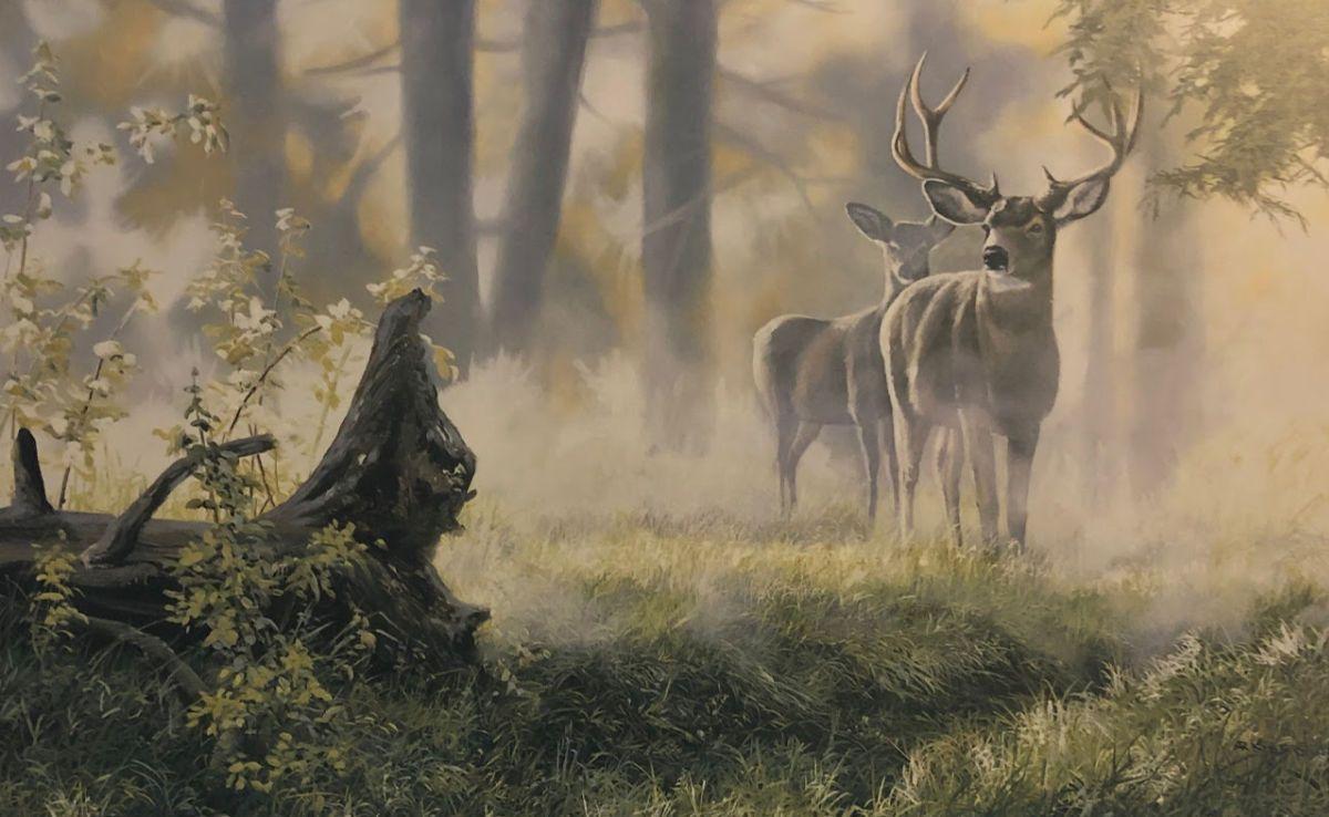 Andrew kiss alert deer buck art print 12 x 775 wildlife