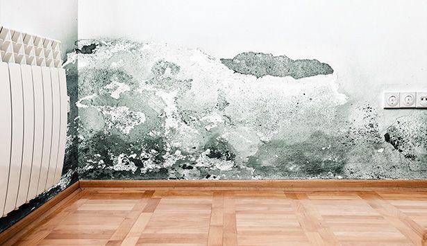 Traiter les problèmes du0027humidité dans la maison - probleme d humidite maison