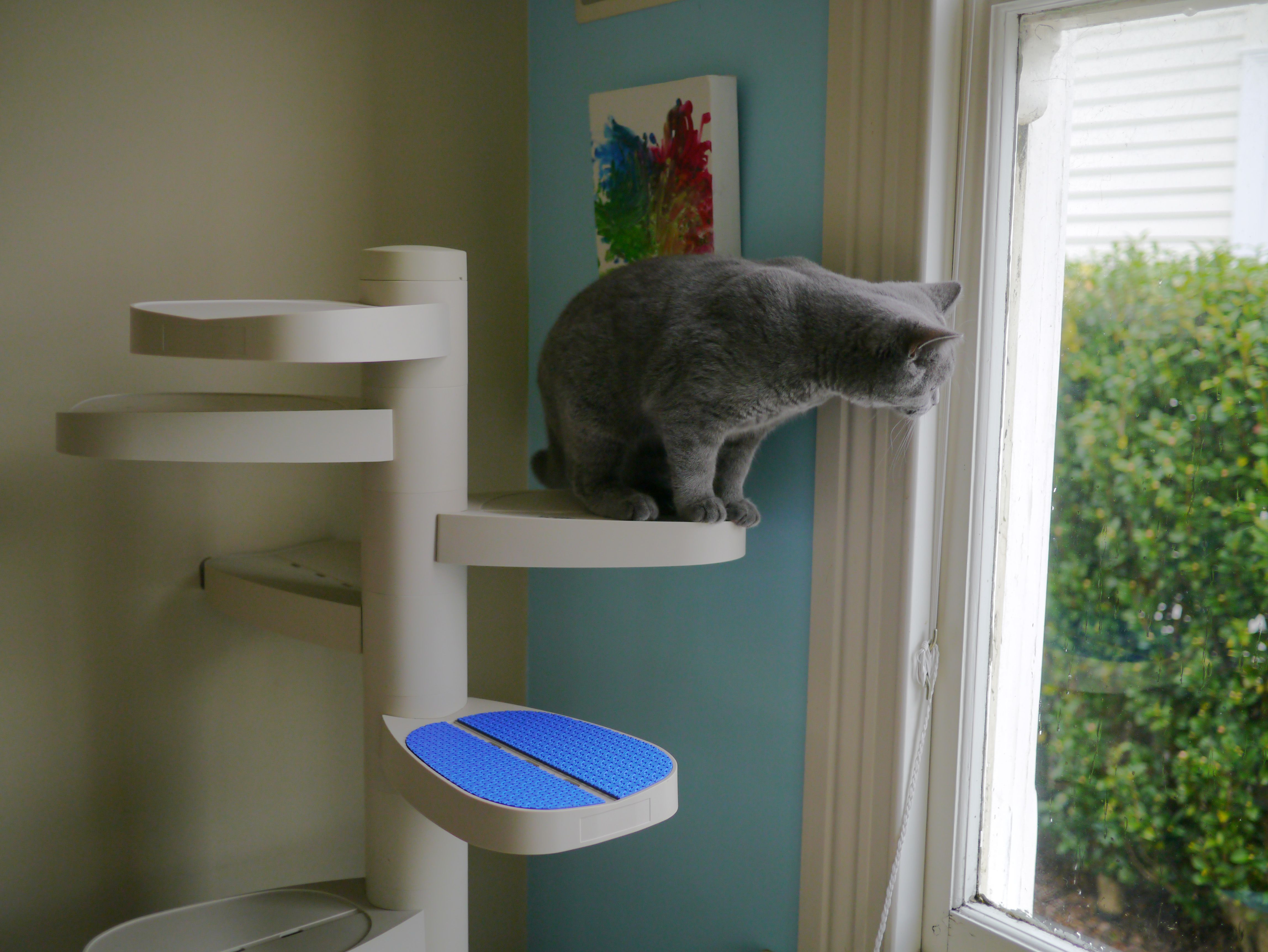 Monkee Tree Scalable Cat Ladder Can Help Your Cat Reach New