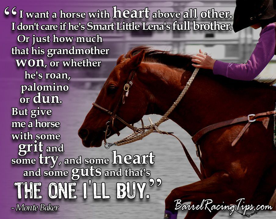 Good Horse & Cowgirl Quotes