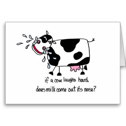Laughing cow birthday card cards pinterest cow birthday and laughing cow birthday card bookmarktalkfo Images