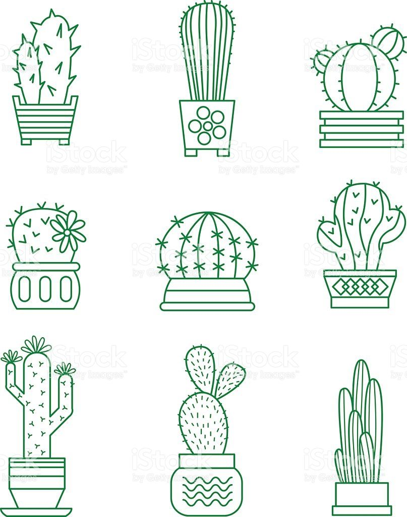 Set of vector cactus icons on white background   plantillas ...