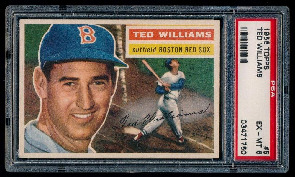 1956 topps 5 ted williams psa 6 at