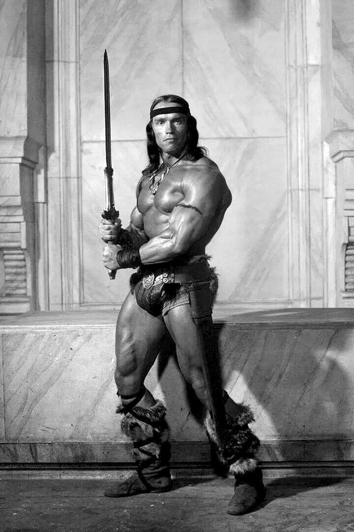 Arnold Schwarzenegger As Conan The Barbarian Conan The Barbarian Movie Conan The Barbarian Barbarian Movie