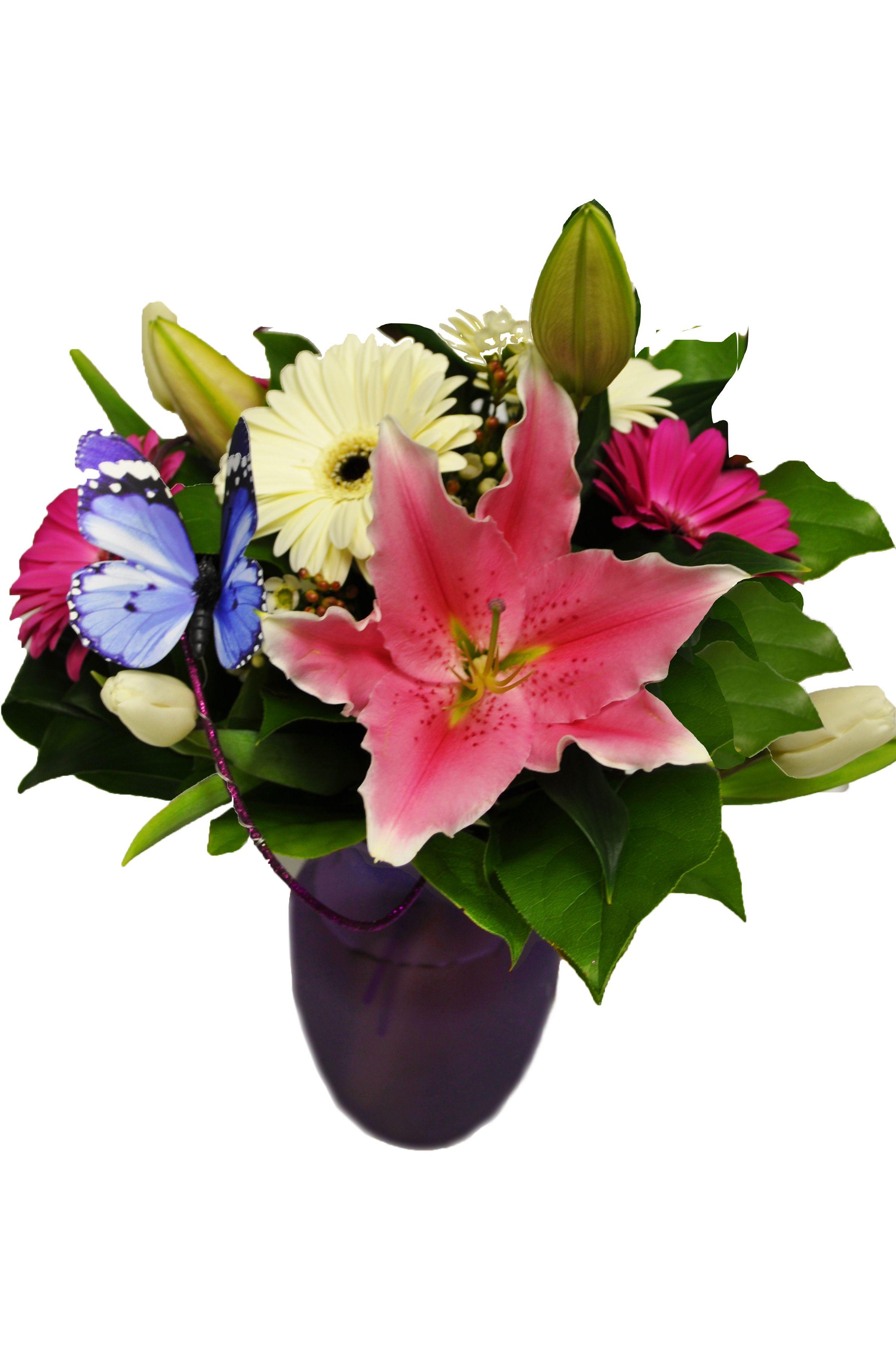 Violet Butterfly Arrangement Order flowers online