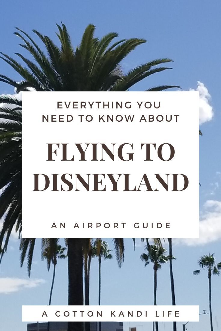Photo of Fliegen nach Disneyland | Der Flughafenführer – Ein Baumwoll-Kandi-Leben