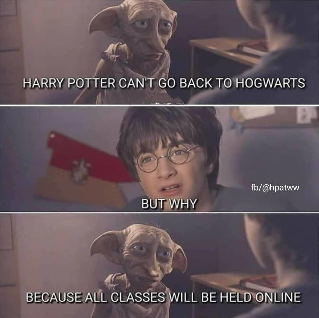 Online Classes Harry Potter Jokes Harry Potter Memes Hilarious Harry Potter Universal